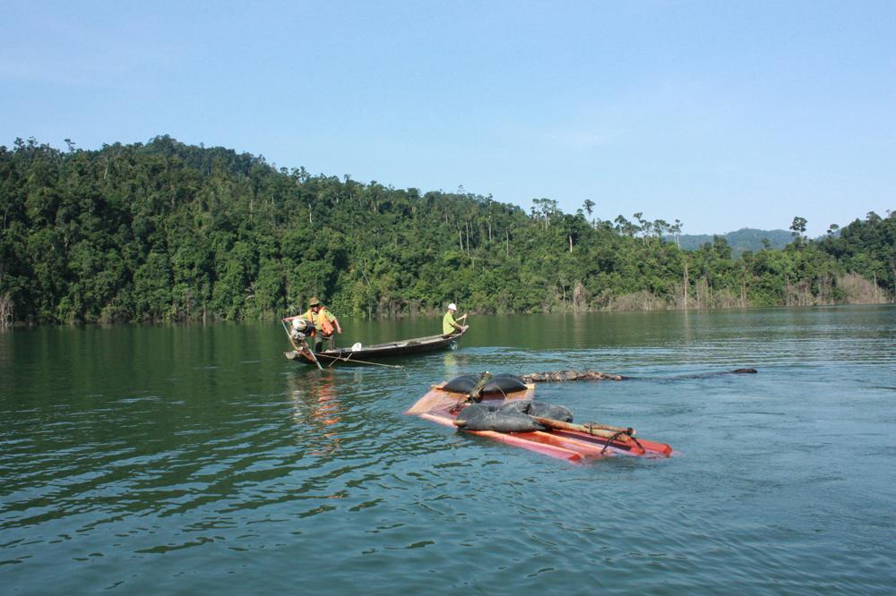 Trên hồ thủy điện Bình Điền